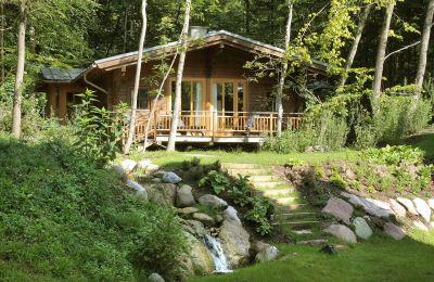 daberer.forest.wellness with forest sauna
