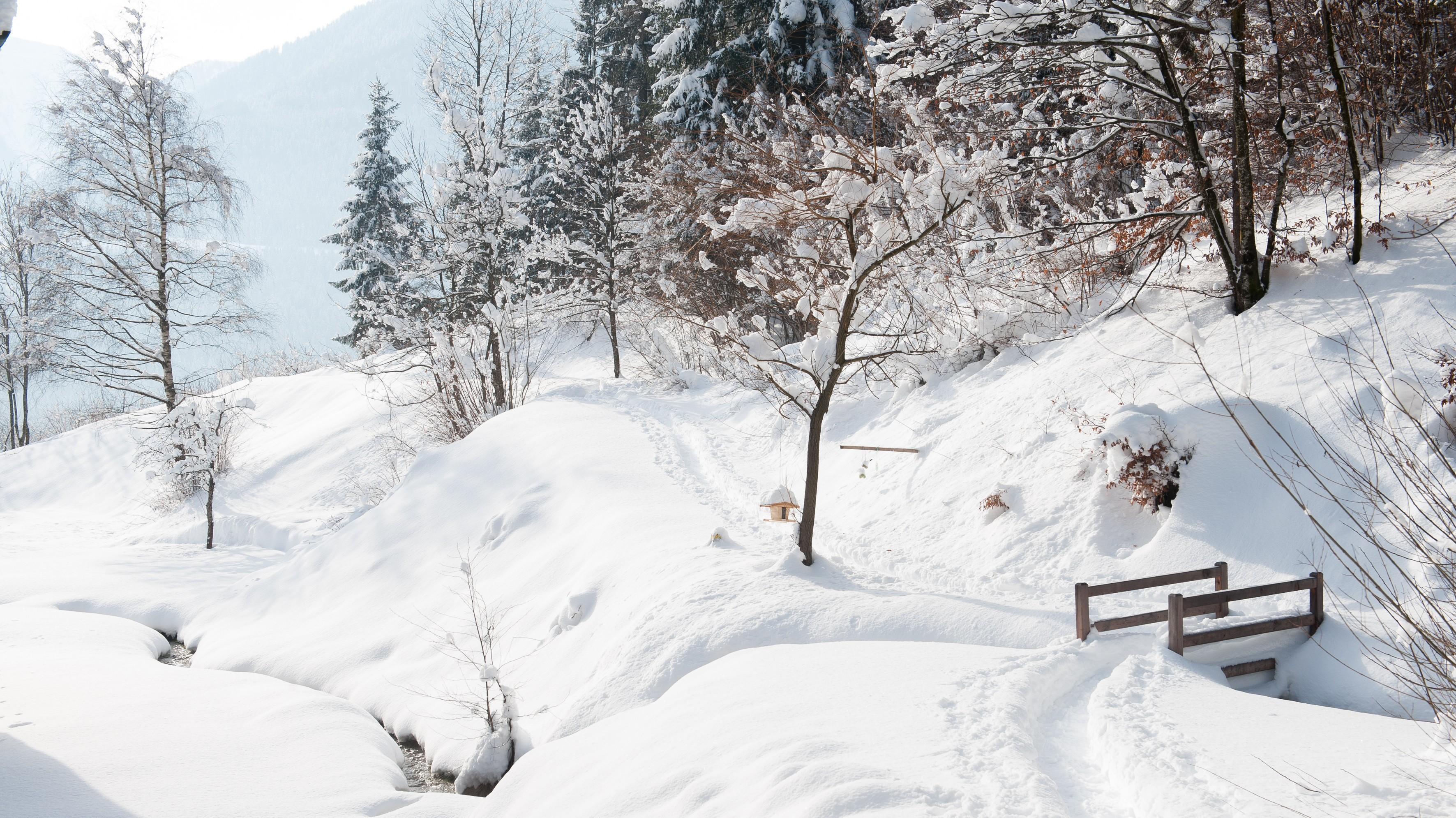verschneiter Bach im Winter
